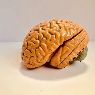 Tip 203. Do a complete brain drain before going into maximum overwhelm.